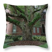 Tampa Tree  Throw Pillow