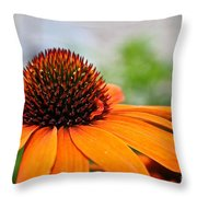 Tangerine Summer Throw Pillow