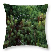 Tangle Of Mosses Throw Pillow