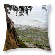 Tangled Overlook Throw Pillow