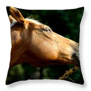 Tasty Branch Throw Pillow