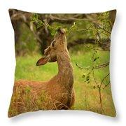 Tasty Leaf Throw Pillow