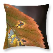 Tattered Leaf Throw Pillow