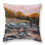 Taum Sauk Mountain Glade I Throw Pillow