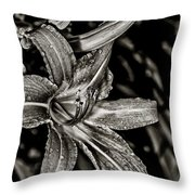 Tawny In Sepia Throw Pillow