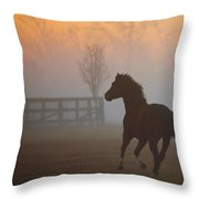 Taz On The Run Throw Pillow