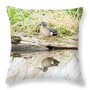 Teal Duck Standing On A Log Throw Pillow