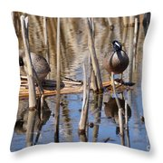 Teal Looking For Something Throw Pillow