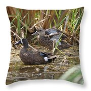 Teal Pair In The Cattails Throw Pillow