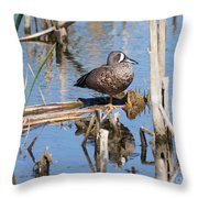 Teal Standing On One Leg Throw Pillow