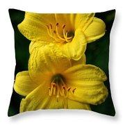 Team Sunshine Throw Pillow