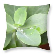 Tears Of Raindrops Throw Pillow