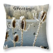 Teasel With Frost Throw Pillow