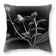 Teenagers Bw Vignette Throw Pillow