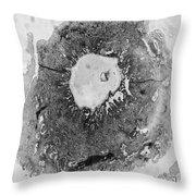 Tem Of Human Ovum Throw Pillow by Omikron