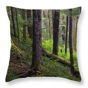 Temperate Rain Forest, Carmanah-walbran Throw Pillow