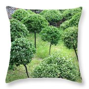 Temple Garden Trees Throw Pillow