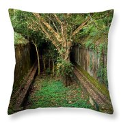 Temple Overgrown By The Jungle Throw Pillow