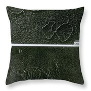 Tems Of Dna And Reaction Throw Pillow