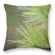 Tender Pines Throw Pillow