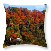 Tennessee Fall Throw Pillow