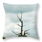 Tennessee Lone Tree Throw Pillow