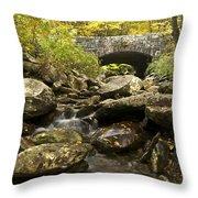 Tennessee Stone Bridge 6062 Throw Pillow