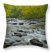 Tennessee Stream 6031 Throw Pillow