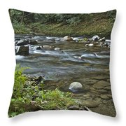 Tennessee Stream 6049 Throw Pillow
