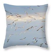Terns Flying Away Throw Pillow