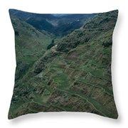 Terraces Of Rice Throw Pillow