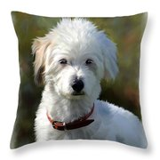 Terrier Dog Portrait Throw Pillow
