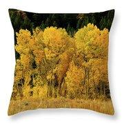 Teton Autumn Foliage Throw Pillow