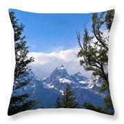 Teton Through The Trees Throw Pillow