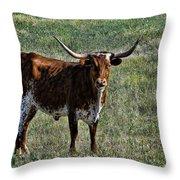 Texa Longhorn Throw Pillow