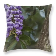 Texas Mountain Laurel Throw Pillow