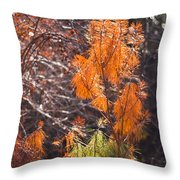 Texas Orange Throw Pillow