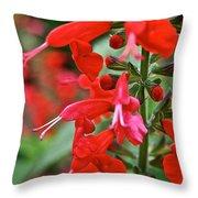 Texas Sage Throw Pillow
