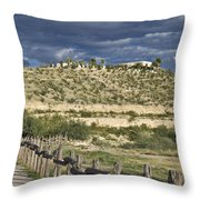Texas, Western Themed Brewster County Throw Pillow