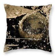 Texture Seeping Throw Pillow