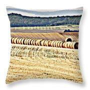 Textured Fields Of France Throw Pillow