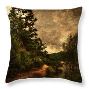 Textured Lake Throw Pillow