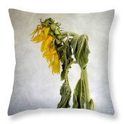 Textured Sunflower Throw Pillow by Bernard Jaubert