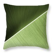 Patterns And Colors. Green. Throw Pillow