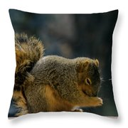 Thank You For The Nuts Throw Pillow