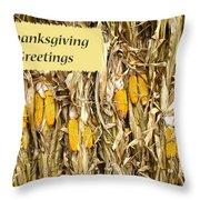 Thanksgiving Greeting Card - Dried Corn Stalks Throw Pillow
