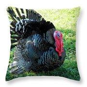Thanksgiving Turkey Dinner Throw Pillow