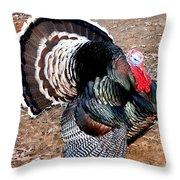 Thanksgiving Turkey Jitters Throw Pillow