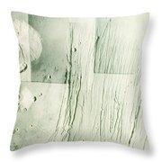 Tharsis Bulge Throw Pillow