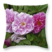 That By Any Other Name  Throw Pillow